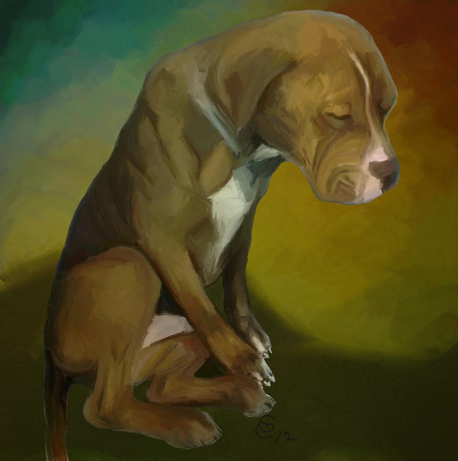 Pitbull Painting - Hopeless by GCannon