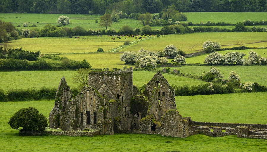 Hore Abbey Photograph - Hore Abbey Ireland by Dick Wood