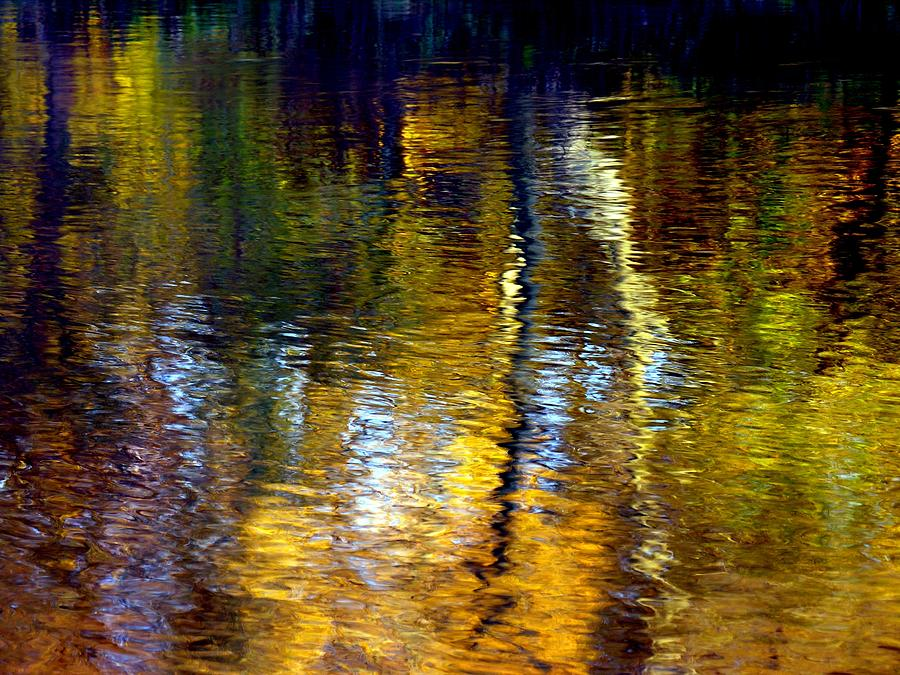 Water Show Gold  by Jacqueline M Lewis