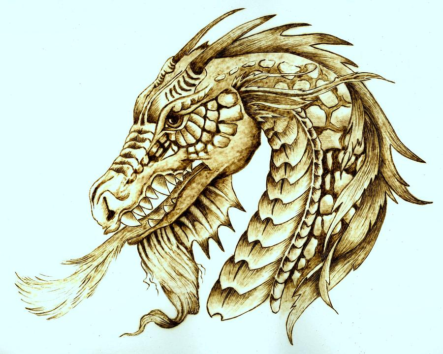 Dragon Pyrography - Horned Dragon by Danette Smith
