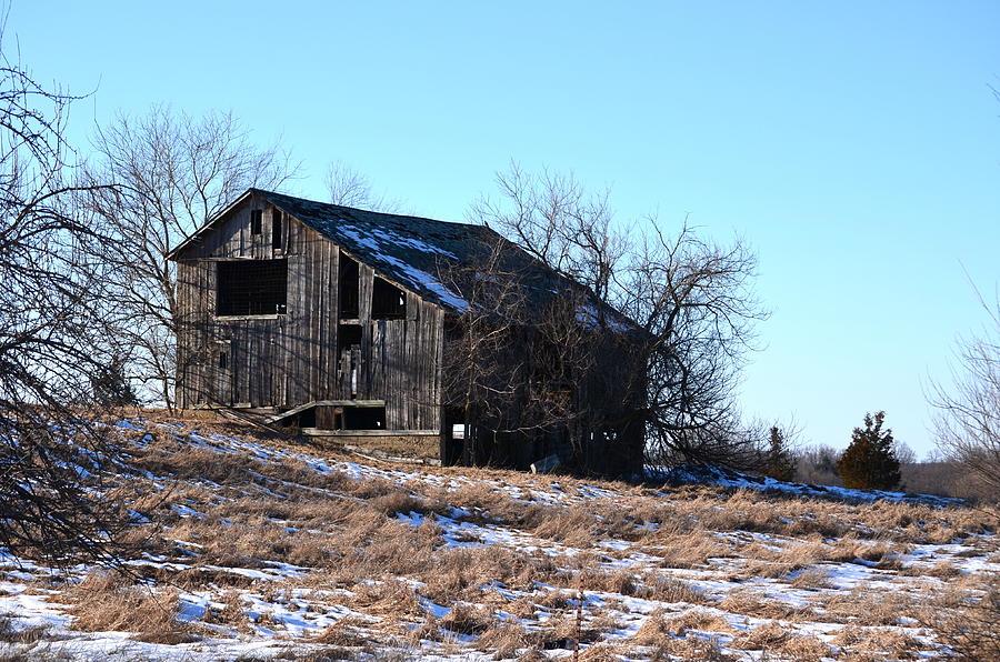 Barns Photograph - Horning Road Barn by Jennifer  King