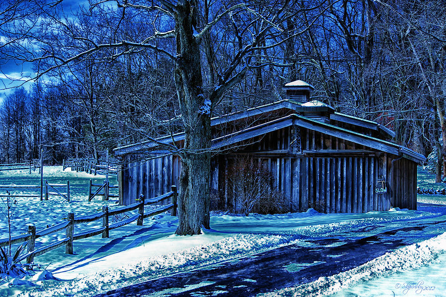 Horse Photograph - Horse Barn by Skip Tribby