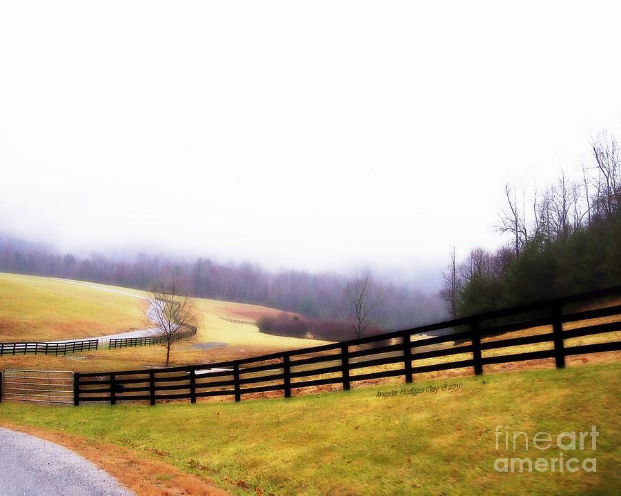Cloudy Day Digital Art - Horse Farm In Rocky Mt Va by Angelia Hodges Clay