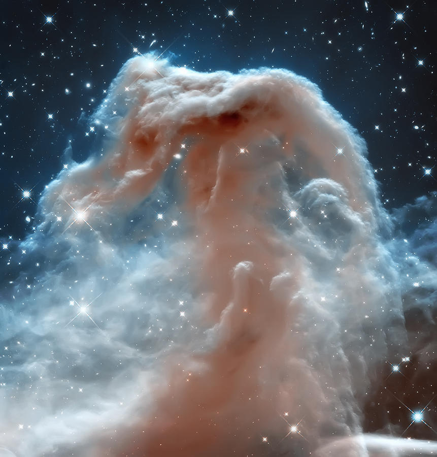 Nasa Images Photograph - Horse Head Nebula by Jennifer Rondinelli Reilly - Fine Art Photography