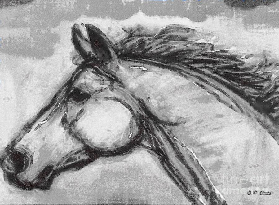 Horses Drawing - Horse Head Study by Elizabeth Coats