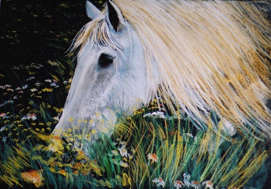 Horse Digital Art - Horse Ign by Eliso  Silva