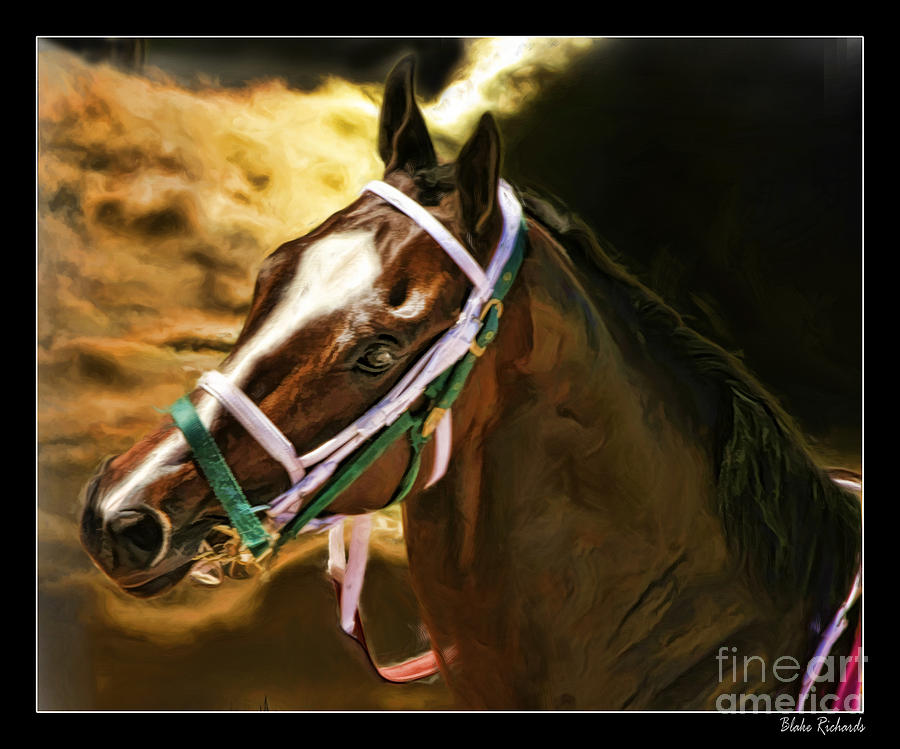 Race Horse Photograph - Horse Last Memories by Blake Richards