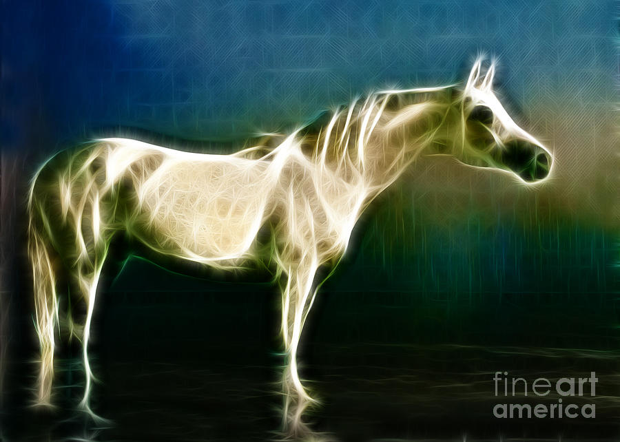 Horse Photograph - Horse Of Light by Jo Collins