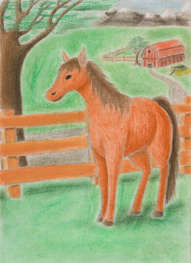 Horse Drawing - Horse On Farm by Jeanette K