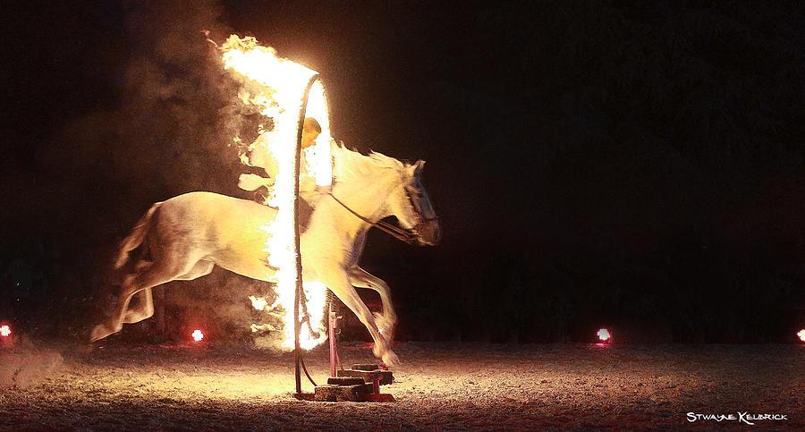 Horse Photograph - Horse on fire by Stwayne Keubrick