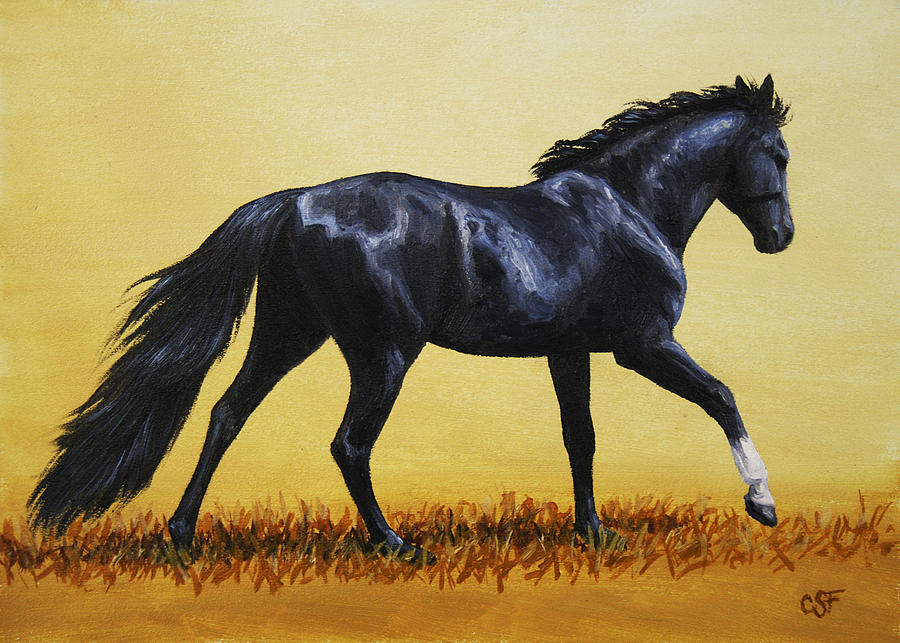 Horse Painting - Horse Painting - Black Beauty by Crista Forest
