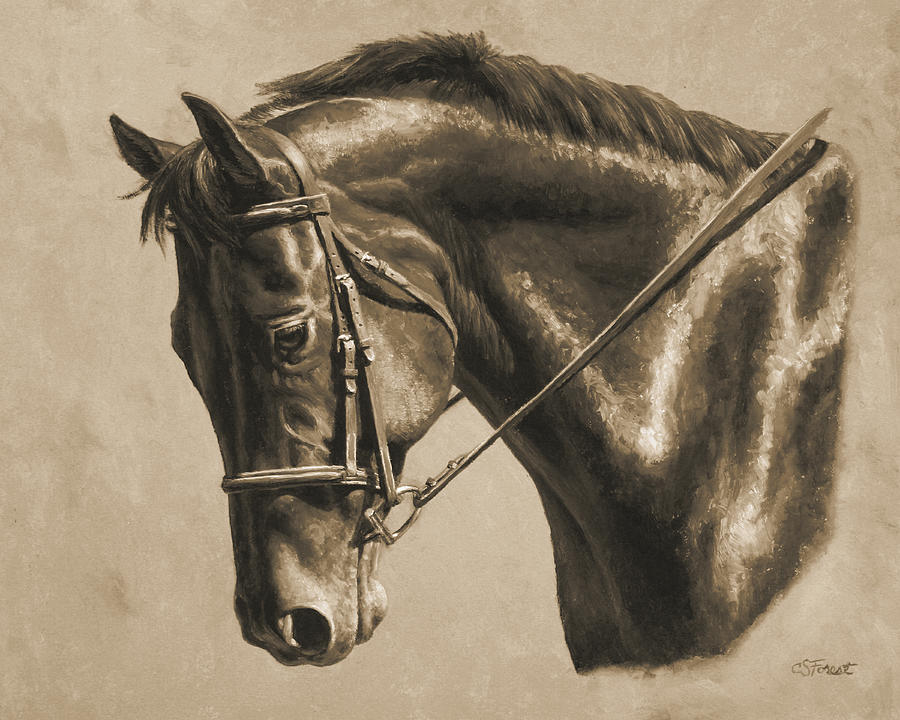 Horse Painting - Horse Painting - Focus In Sepia by Crista Forest