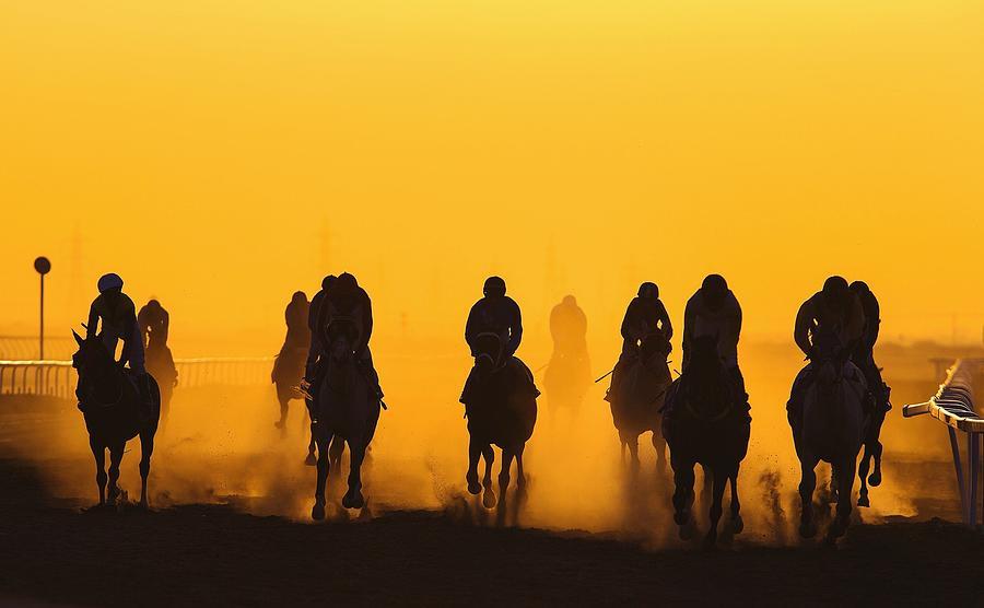 Horse Racing Against Clear Orange Sky Photograph by Bob Mccaffrey / Eyeem