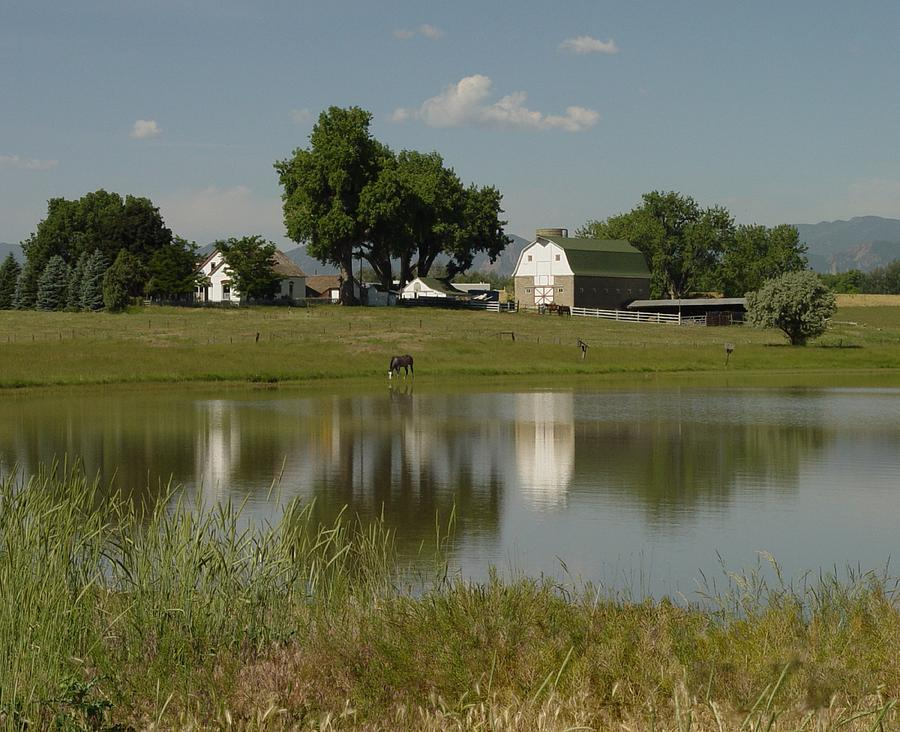 Ranch Photograph - Horse Ranch by Stephen Schaps