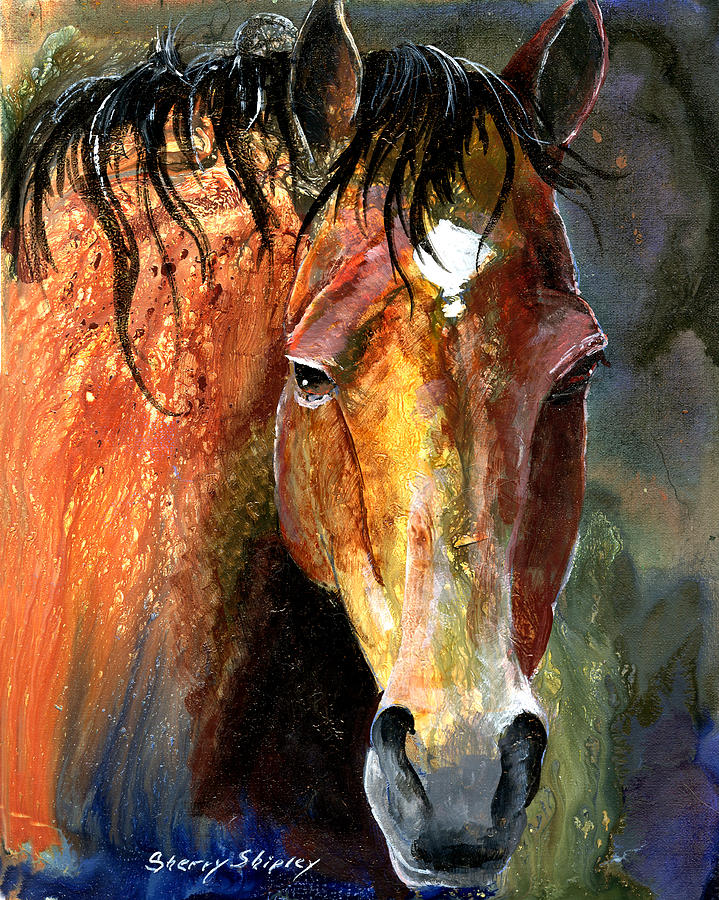 Horse Painting - Horse by Sherry Shipley