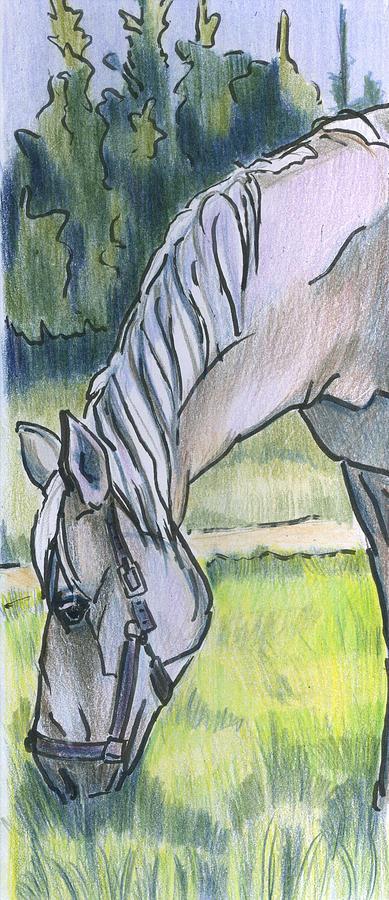Animals Drawing - Horsegazer by Lelia Sorokina