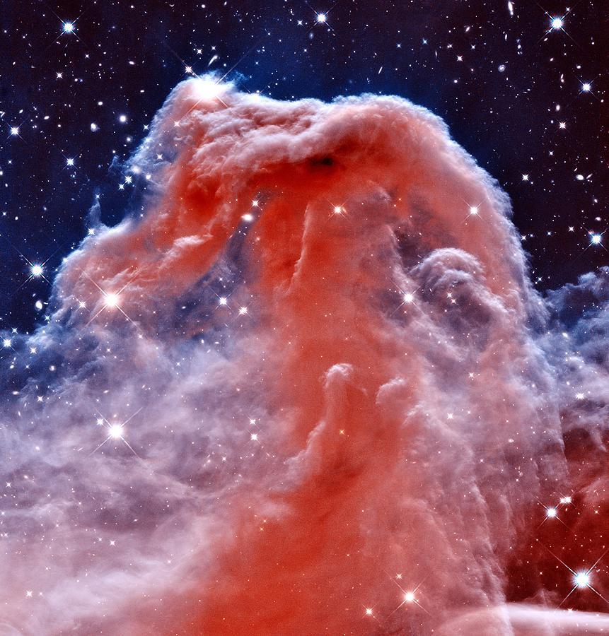Cosmos Photograph - Horsehead Nebula by Benjamin Yeager