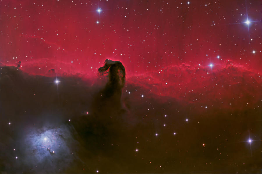 Astronomy Photograph - Horsehead nebula by Brian Peterson