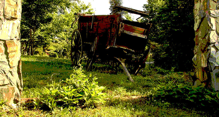 Wagon Photograph - Horseless Color by Robert J Andler