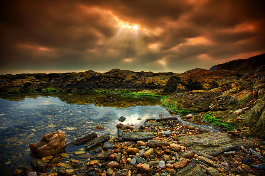 Print Photograph - Horseley Cove Rockpool by Mark Leader