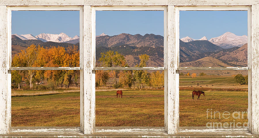 Horses Photograph - Horses And Autumn Colorado Front Range Picture Window View by James BO  Insogna