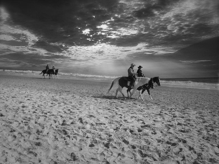 Horses Photograph - Horses On The Beach Bw by Nelson Watkins