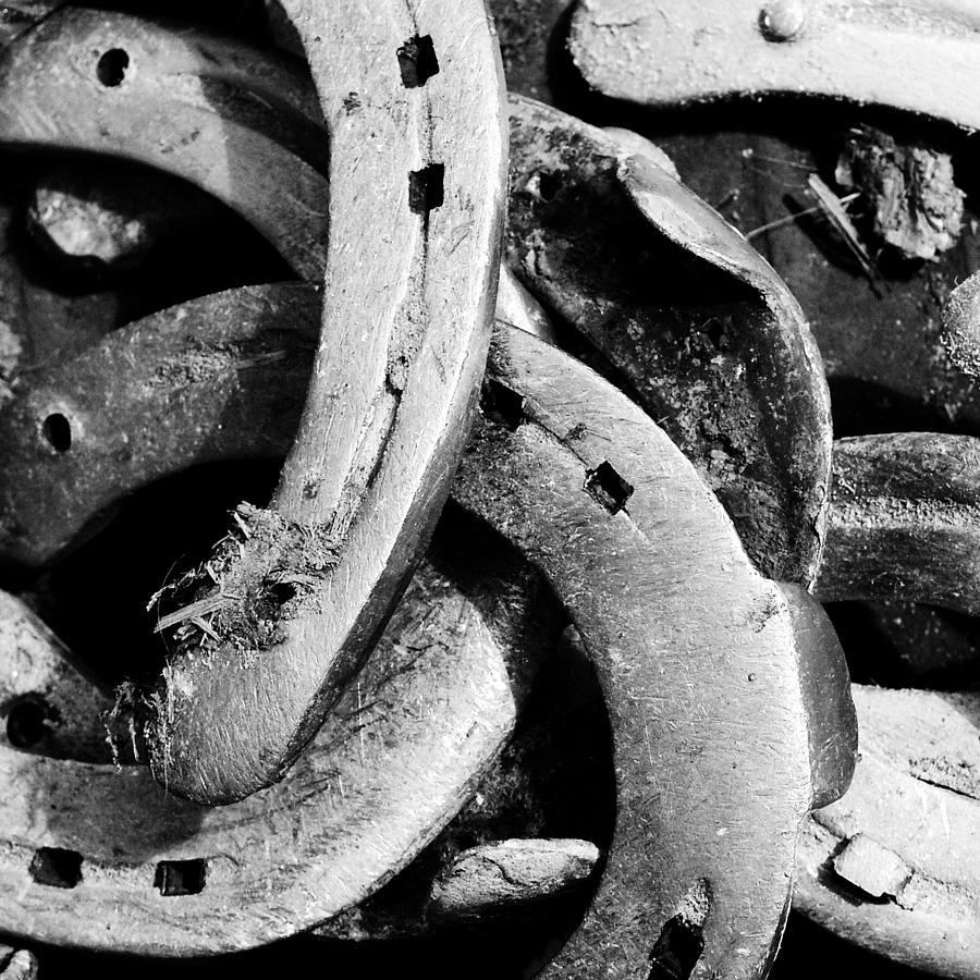 Horseshoes Photograph - Horseshoes black and white by Matthias Hauser