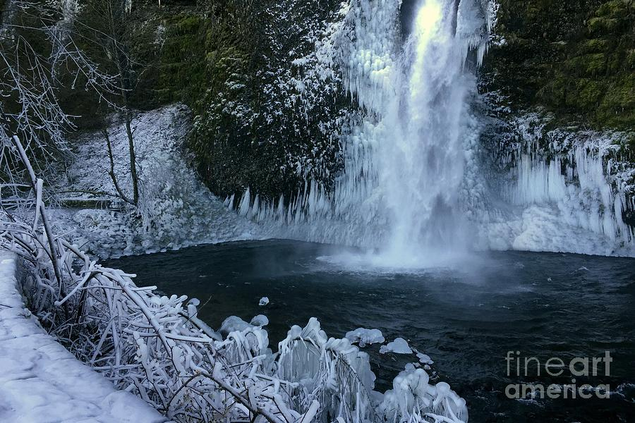 Horsetail Falls In Columbia Gorge In Winter Photograph