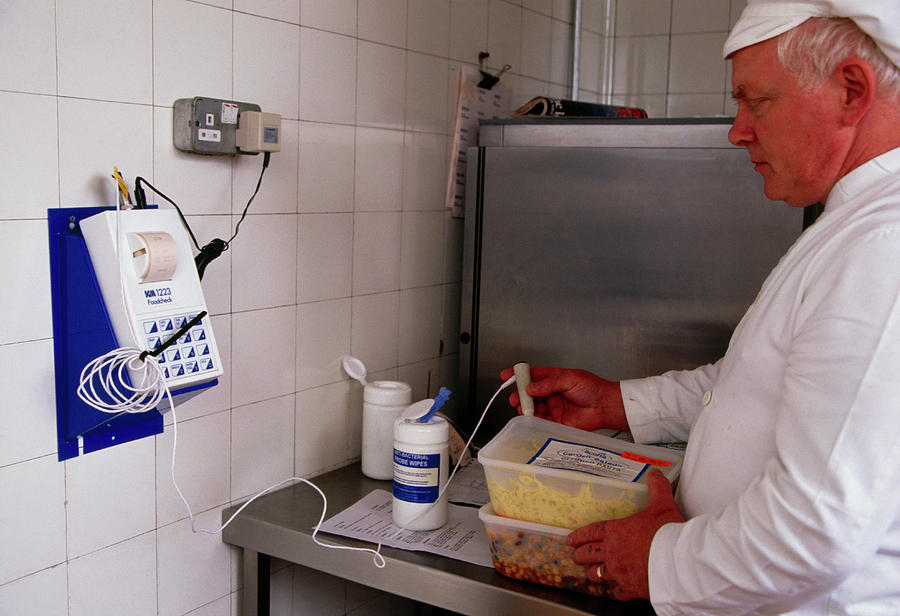 Thermometer Photograph - Hospital Food Check by Antonia Reeve/science Photo Library