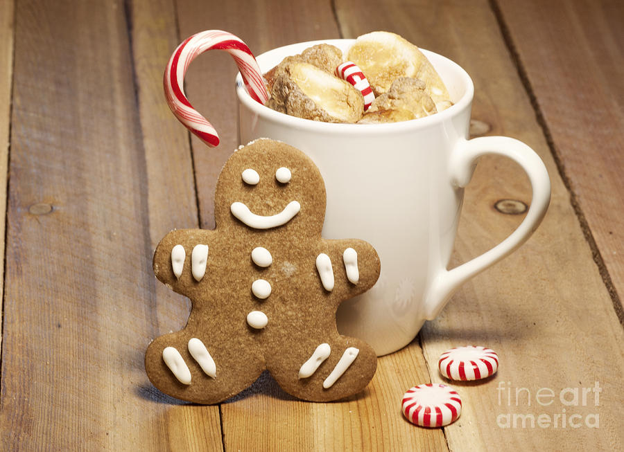 Hot Chocolate Toasted Marshmallows And A Gingerbread
