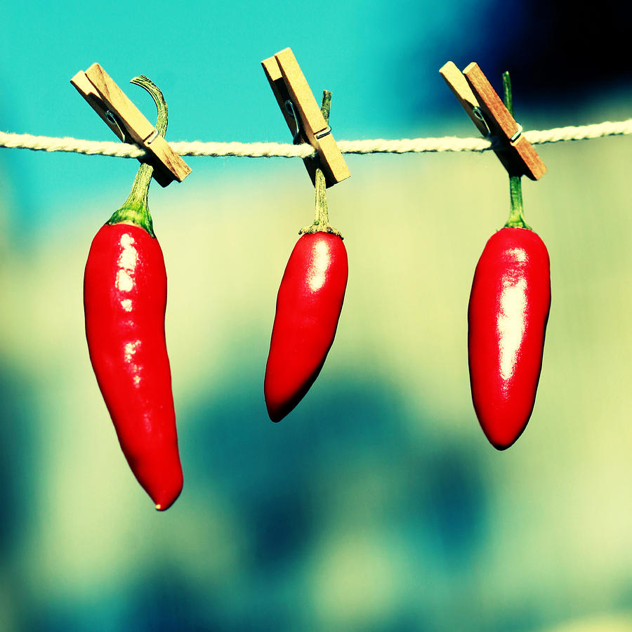 Peppers Photograph - Hot Family by Beata  Czyzowska Young