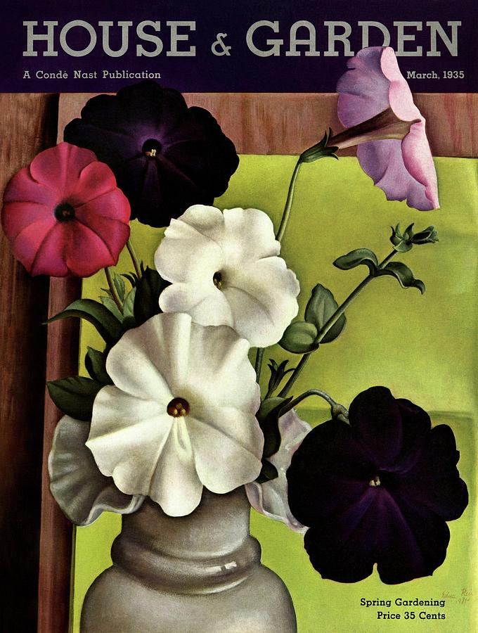 House & Garden Cover Illustration Of Petunias Photograph by Edna Reindel