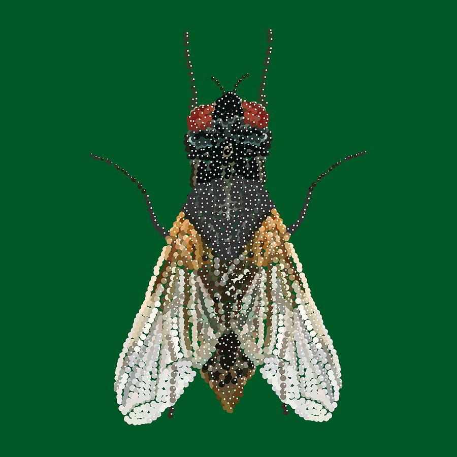 Pest Digital Art - House Fly In Green by R  Allen Swezey