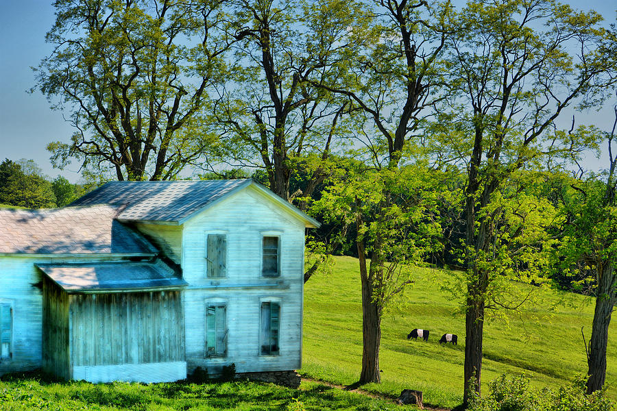 Abandoned Photograph - House Of The Oreos by Emily Stauring