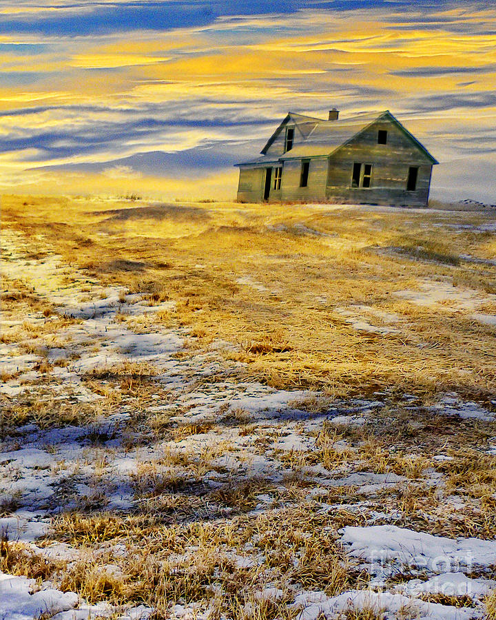 House on the Hill vertical version by Judy Wood