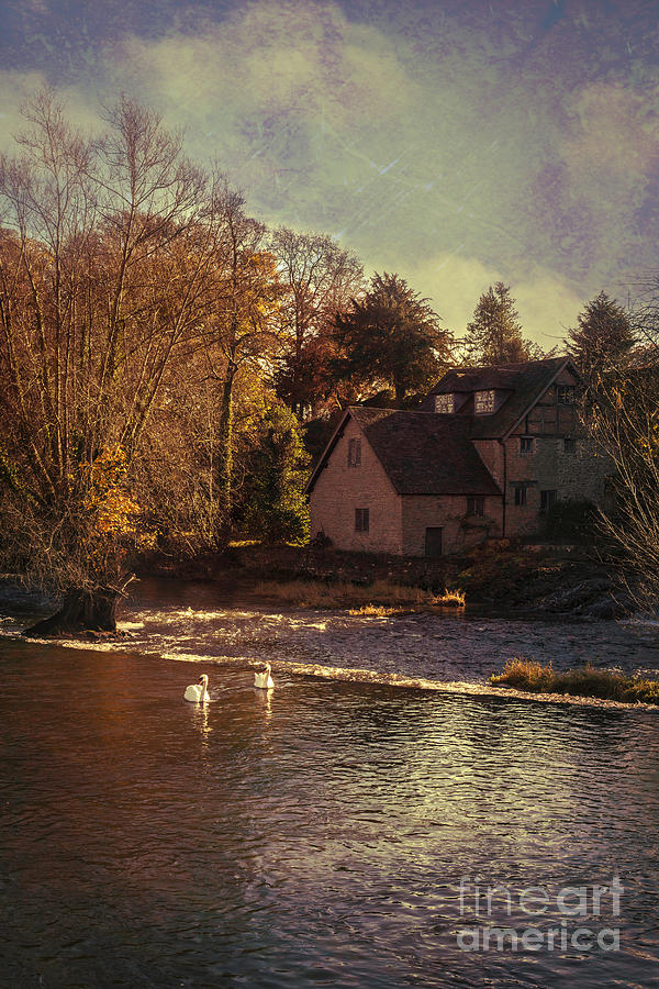 Old Photograph - House On The River by Amanda Elwell