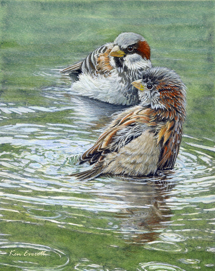 House Sparrows  Painting - House Sparrows  by Ken Everett