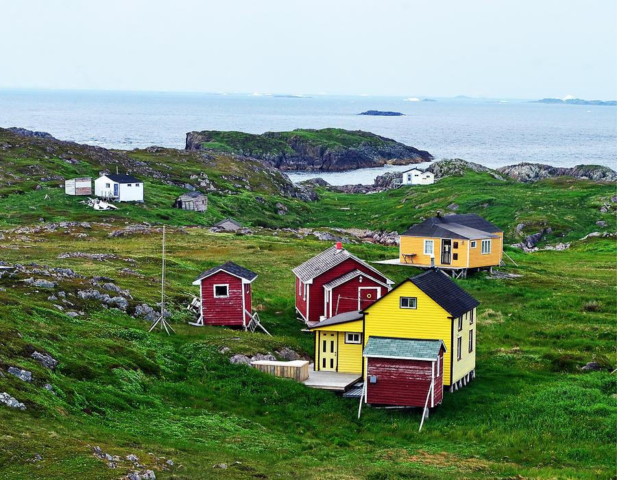 Houses on Little Fogo Island Newfoundland by Lisa Phillips