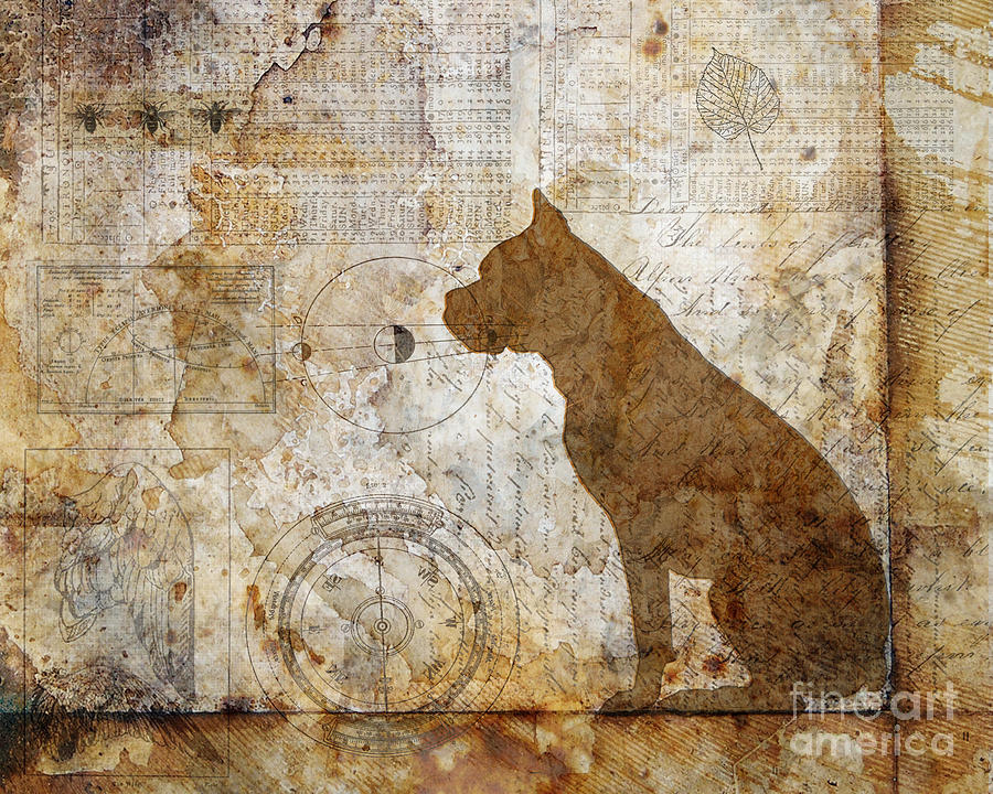 Dog Digital Art - How The World Works by Judy Wood