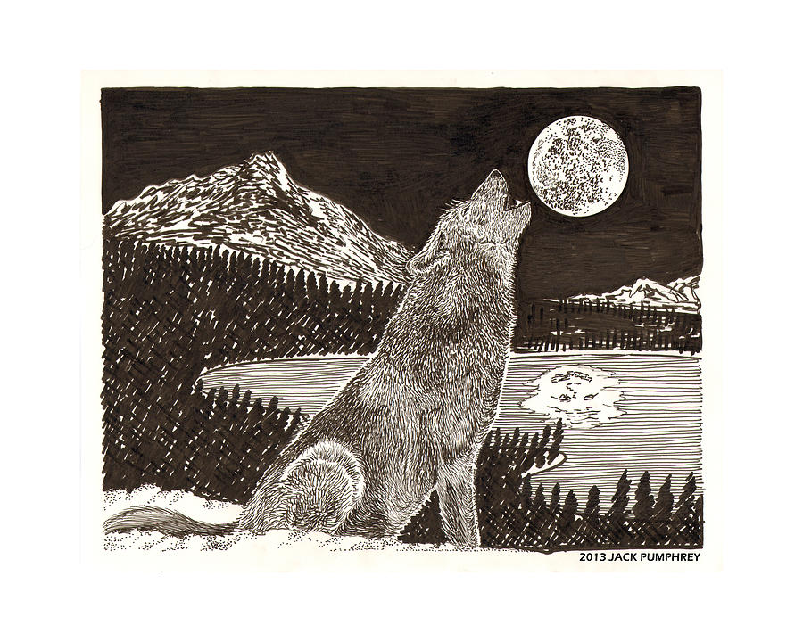 Why Do Coyotes Howl At The Moon? Drawing - Howling Coyote Full Moon Ho0wling by Jack Pumphrey