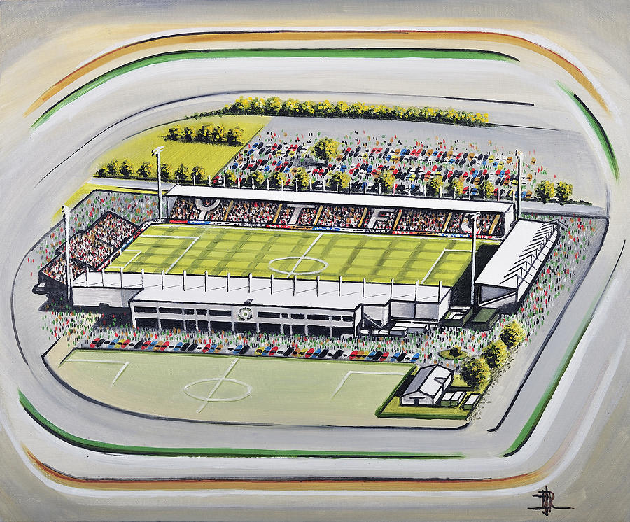 dded705f0 Huish Park - Yeovil Town Painting by D J Rogers