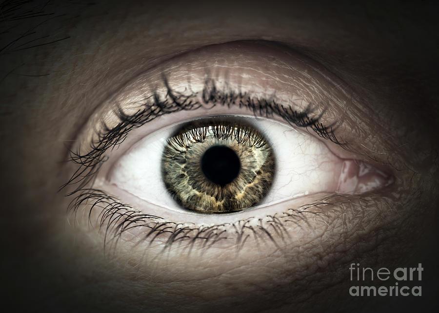 Eye Photograph - Human Eye Macro by Elena Elisseeva