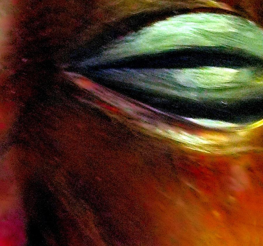 Non Duality Photograph - Human Golden Calf by Paula Andrea Pyle