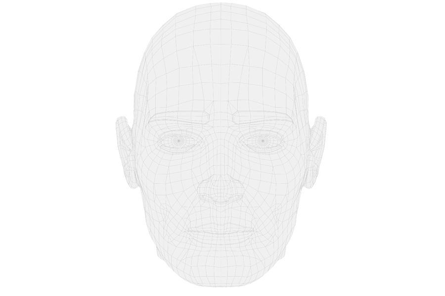 Human head in wireframe with front view on white background. Photograph by Die-phalanx