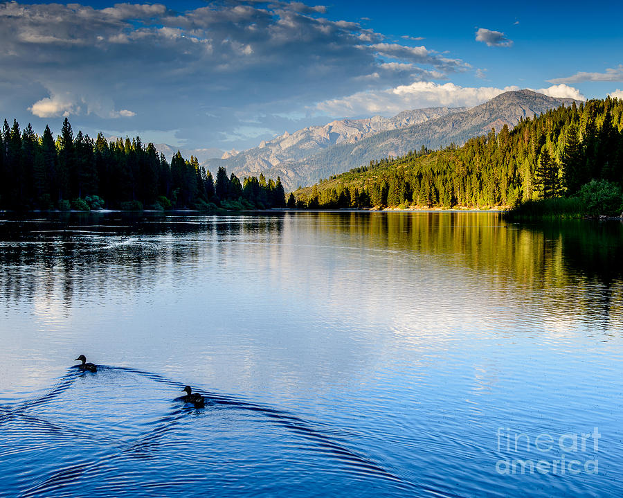 Lake Photograph - Hume Lake Evening by Terry Garvin