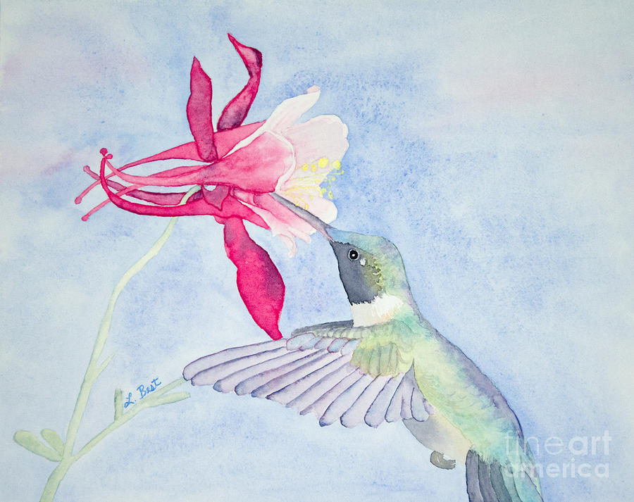 Ruby-throated Painting - Hummingbird And Columbine by Laurel Best