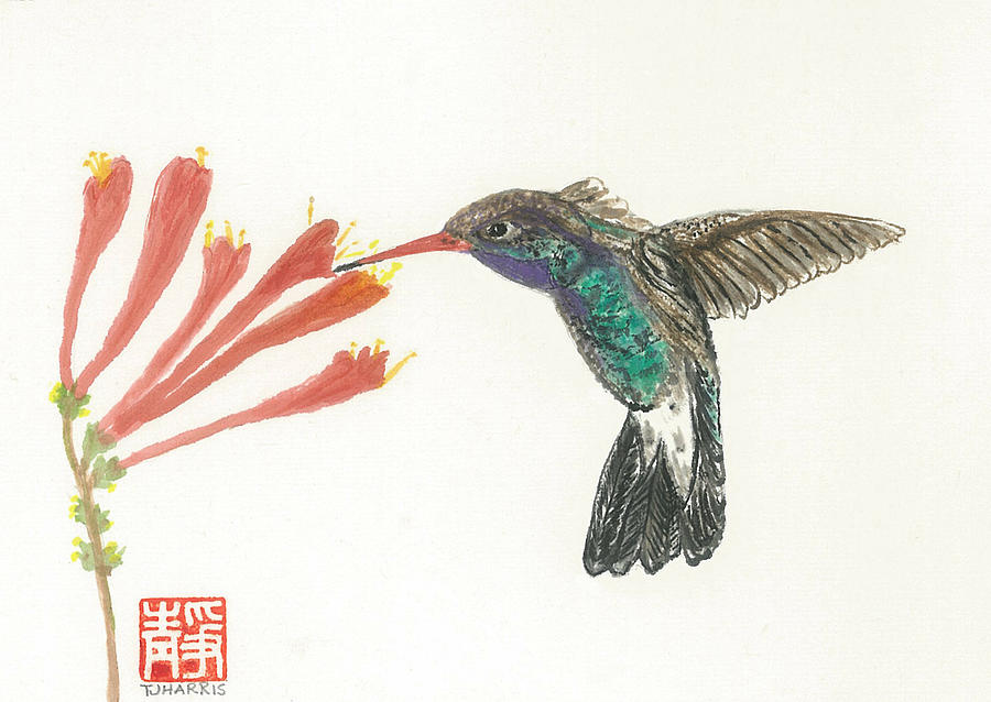 Japanese Painting - Hummingbird Flight by Terri Harris
