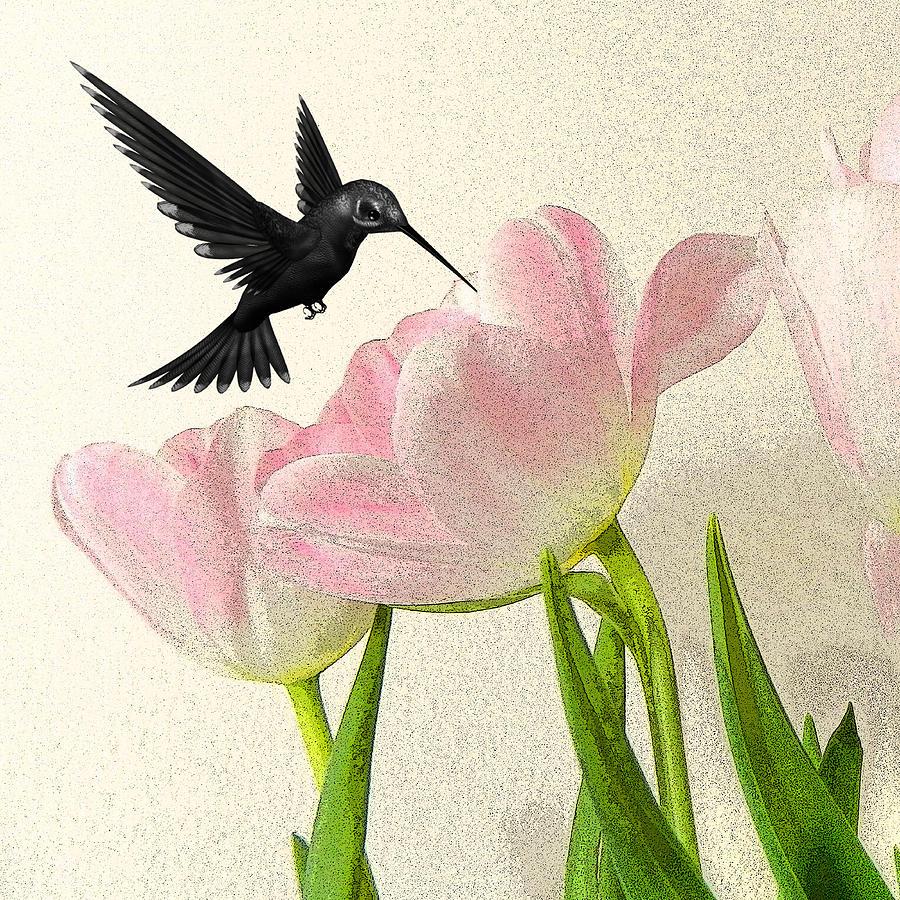Hummingbirds Photograph - Hummingbird by Sharon Lisa Clarke