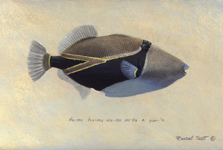 Fish Painting - Humu Humu Nuku Nuku Apua by Randall Scott