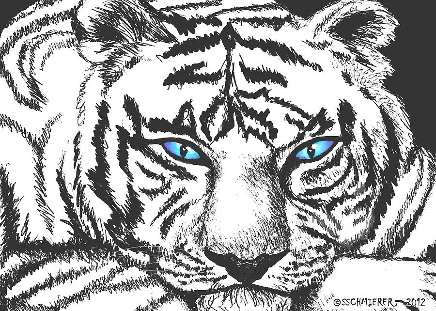 Tiger Drawing - Hungry Eyes by Sophia Schmierer